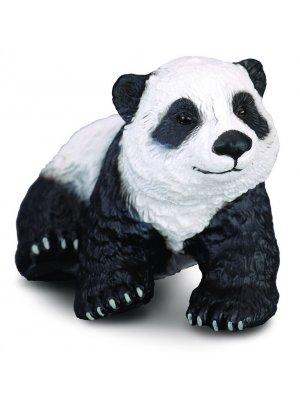 Didžiosios pandos jauniklis sėdintis S