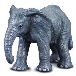 Jauniklis afrikinio dramblio (s)
