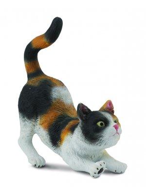 Naminė katė trijų spalvų (S)
