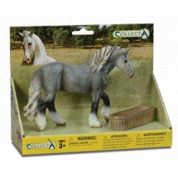Rinkinys arklio ir dubens
