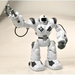 Jaki robotas RC Robohoter 1804F099