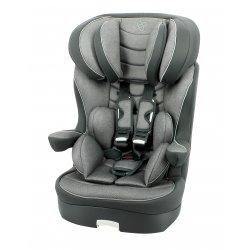 Automobilinė kėdutė-busteris Dream Platinium Gris