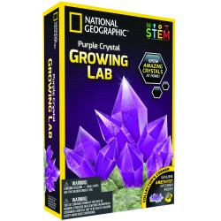National GEOGRAPHIC rinkinys Crystal Grow Purple NGPCRYSTAL