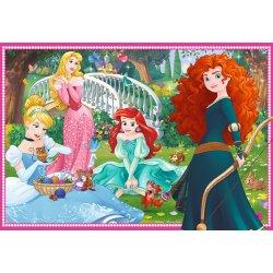Dėlionė Disney Princess 2x12vnt